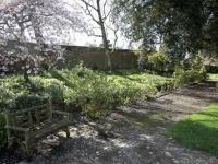A garden path at Smedmore House
