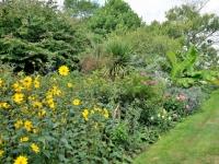 Smedmore-house-garden-flowers